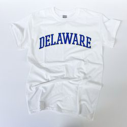 University of Delaware Arched Delaware T-shirt - white