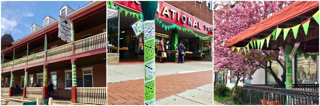 Lyme Awareness Yarnbombs Newark Delaware
