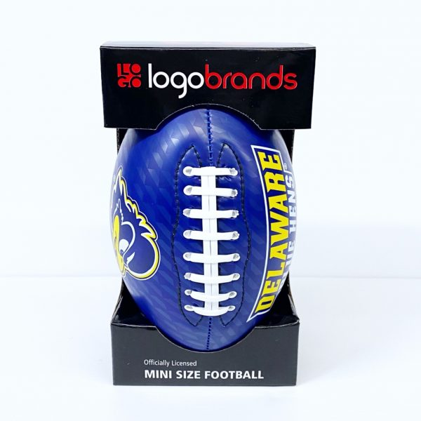 University of Delaware Mini Football