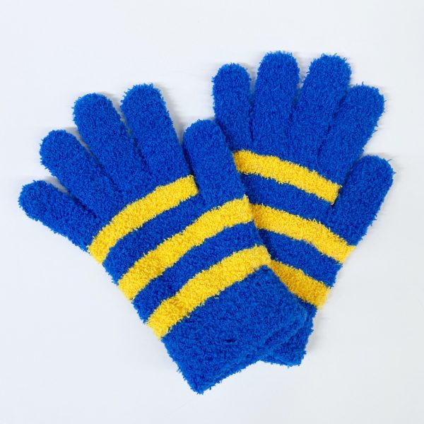 Blue and Yellow Striped Gloves