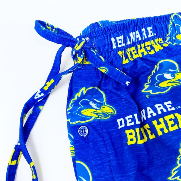Detail of University of Delaware All-Over Print Lounge Pants