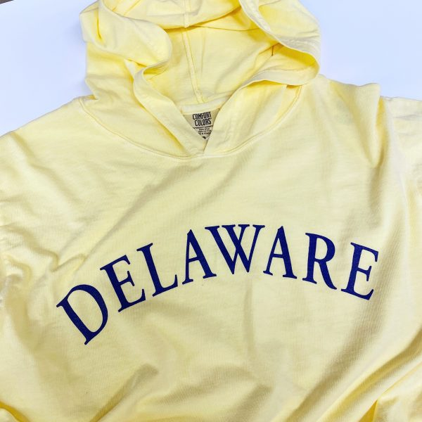 Comfort Colors Arched Delaware Long Sleeve Hoodie T-shirt
