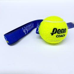 University of Delaware Tennis Ball Dog Toy