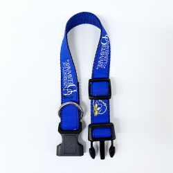 University of Delaware Varsity Dog Collar