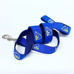 University of Delaware Varsity Dog Leash